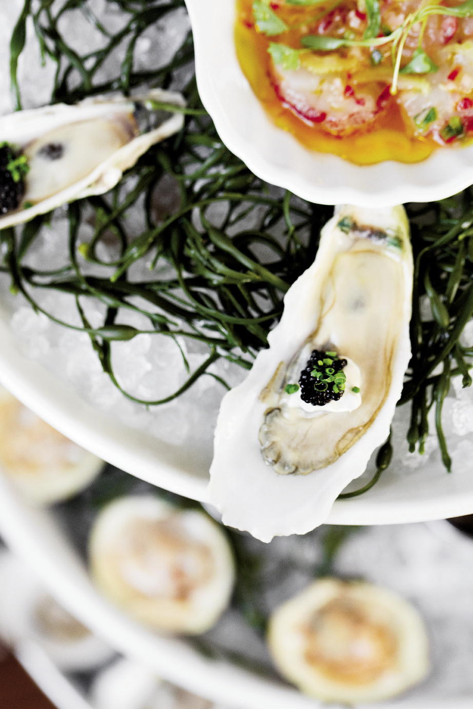 Clammer Dave's pristine Caper's Blades oysters make appearances at fine restaurants all over town—with caviar at Charleston's The Ordinary