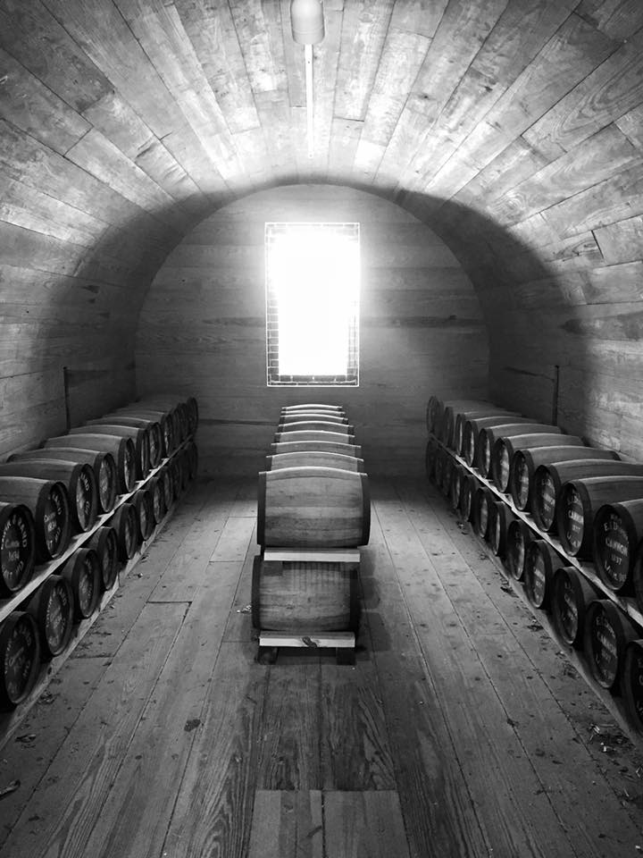 """HONORABLE MENTION Amateur category: Interior of Fort Moultrie Powder Magazine by Ashley Townsend; """"Sunlight shining into the powder magazine on Fort Moultrie, August 2015"""""""