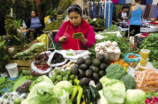 A vendor in the Mercado Ignacio Ramirez sells a bounty of fresh produce and snacks. The local fruits and vegetables in the covered market are varied and extremely fresh.
