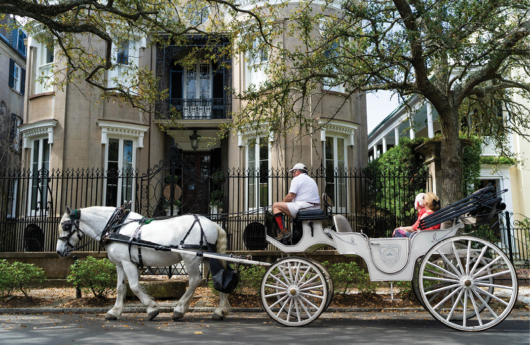 "While regulated by the city, horse carriages can add to downtown traffic woes, and tourists crowd sidewalks. The city's 2015 Tourism Management Plan is in need of updating, with ""more teeth and more accountability,"" says Historic Charleston Foundation's Winslow Hastie."