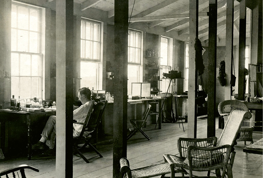 Inness Hartley at his desk in the lab.