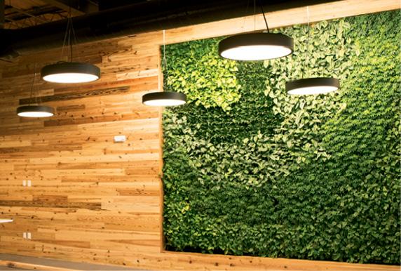 A green wall inside an 804 Meeting office space