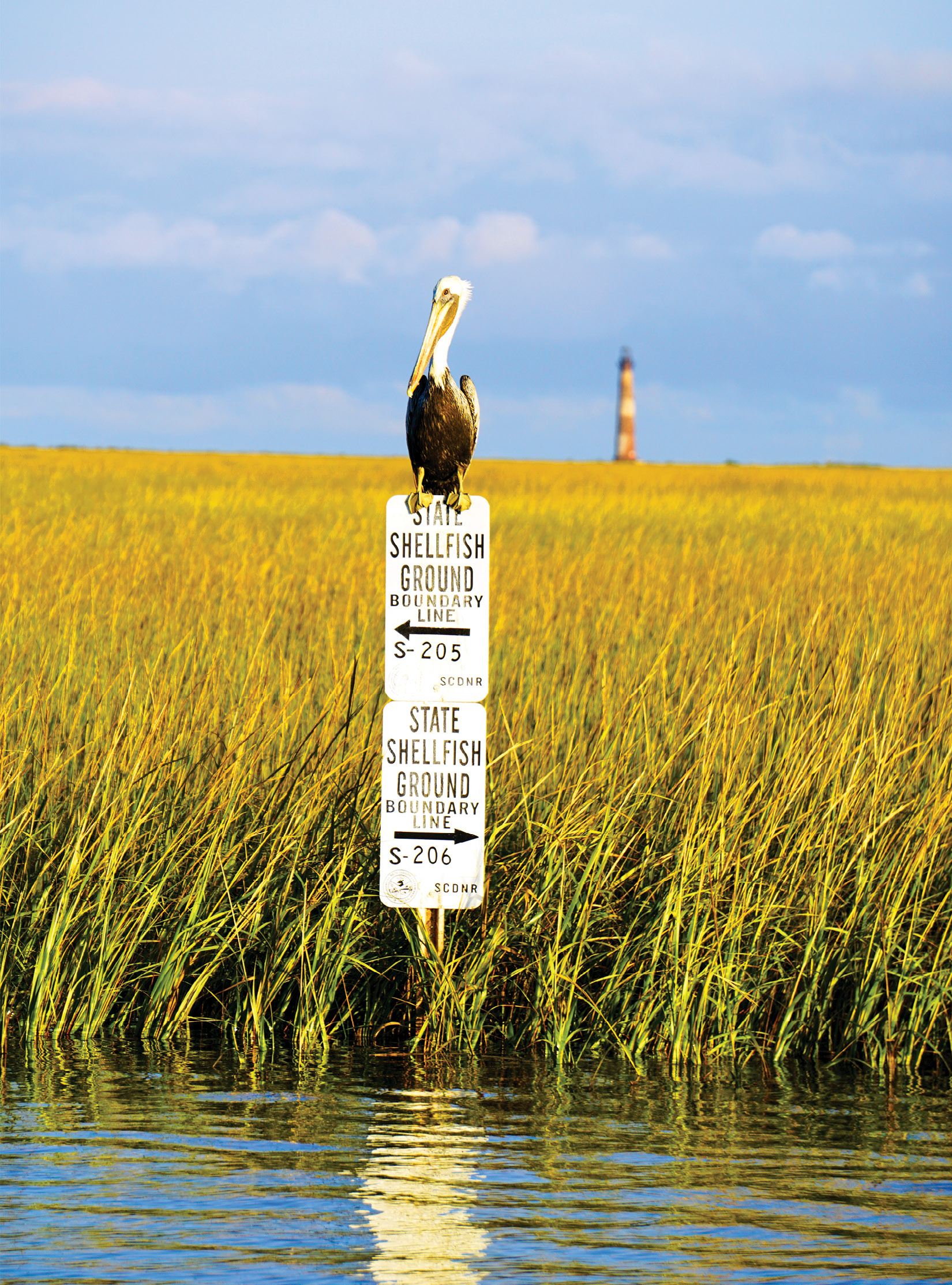 All oyster leases are protected, monitored, and managed by the state's Department of Natural Resources and are marked accordingly.
