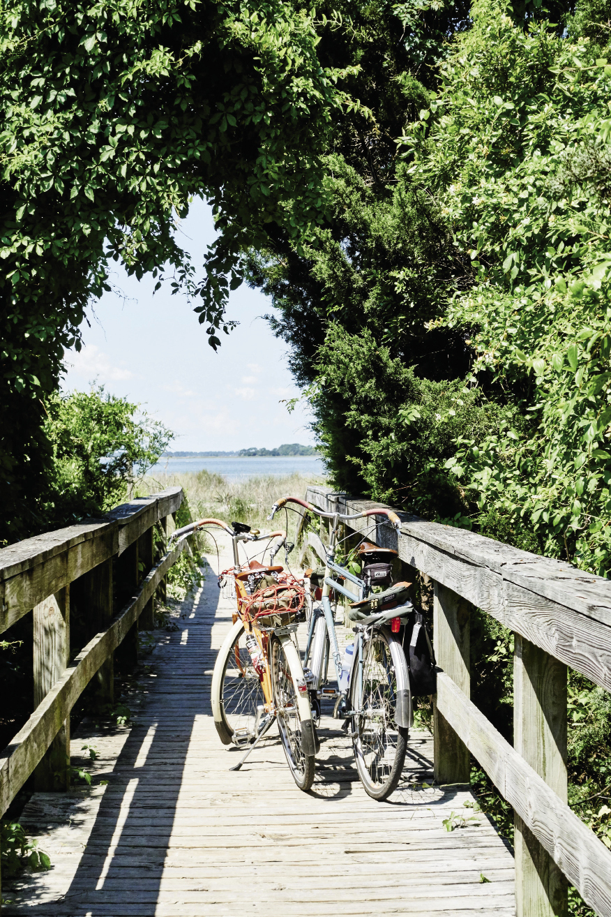 Edisto Island: There are no worries about parking when you pedal to the beach, which is known for great shelling.