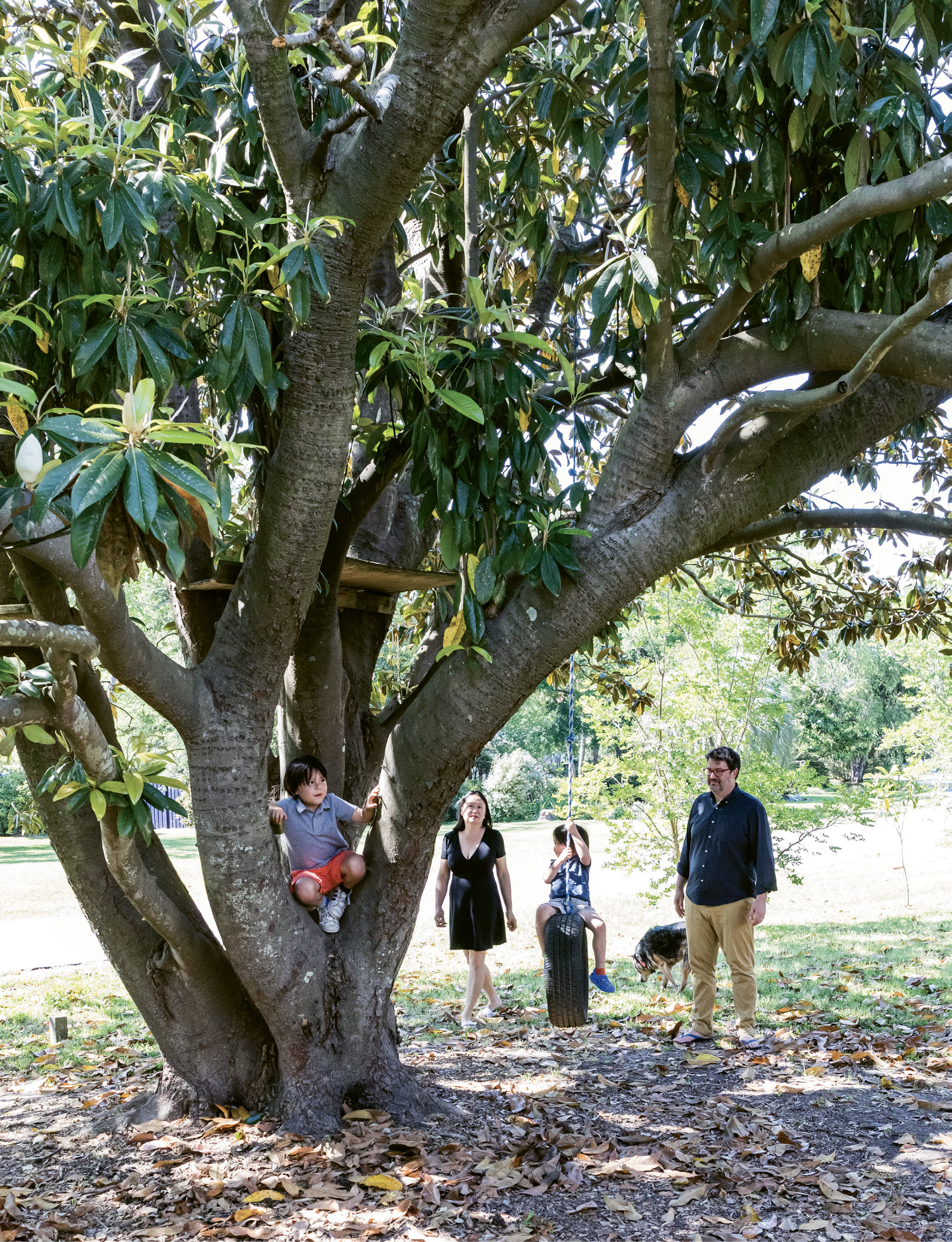 A massive magnolia is one of many established trees that flourish in Wong and husband John David Harmon's yard. The 12 fruit trees provide inspiration for Wong's work and a playground for her boys.