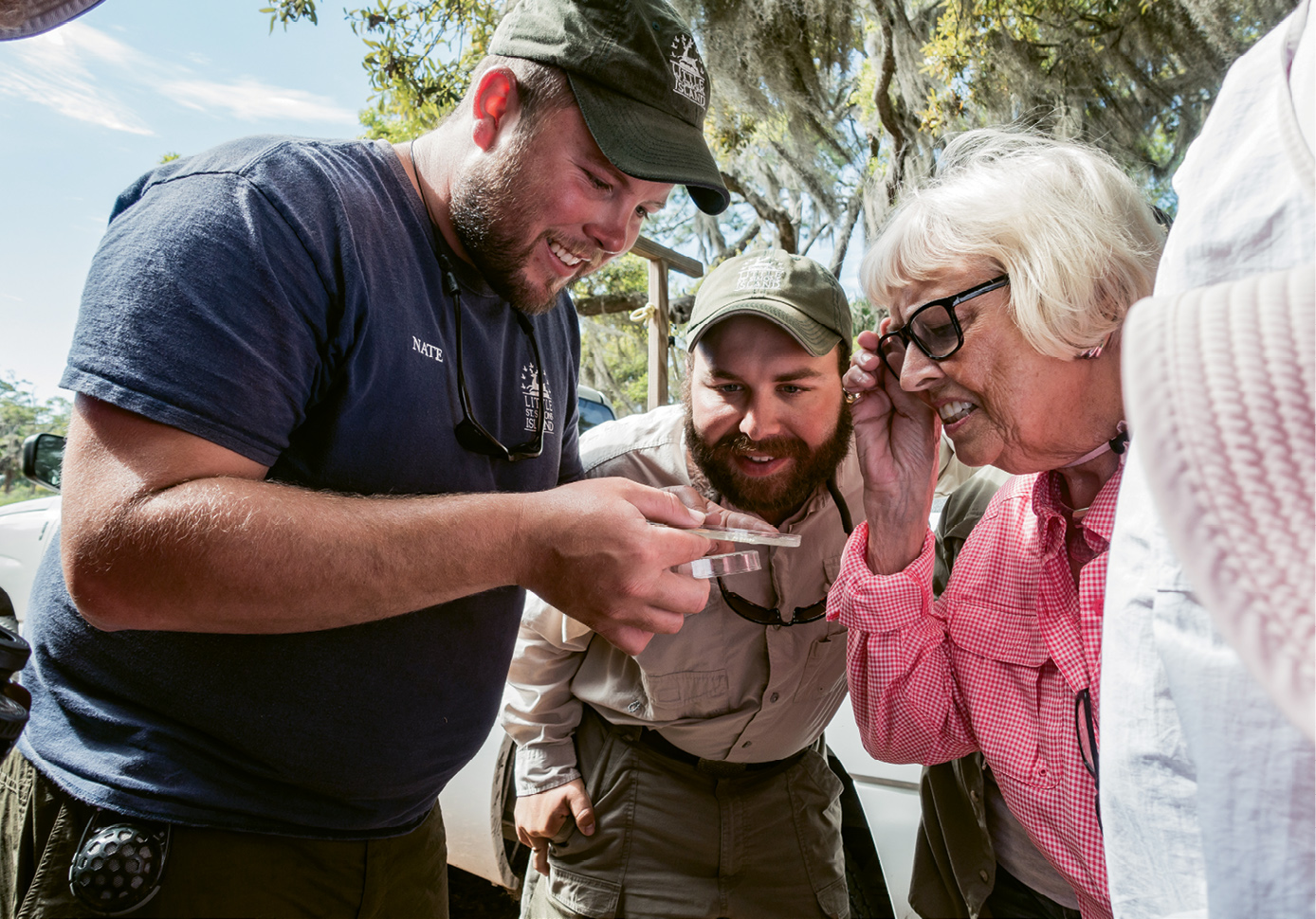 Naturalists show guests a find of tiny horseshoe crab eggs.