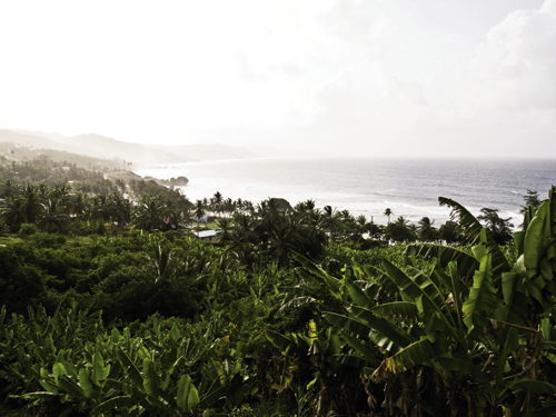 Barbados is hilly but not mountainous or volcanic, with its tallest peak, Mount Hillaby, at a mere 1,115 feet. High season runs from mid-November through April, while June to November are the rainiest months.