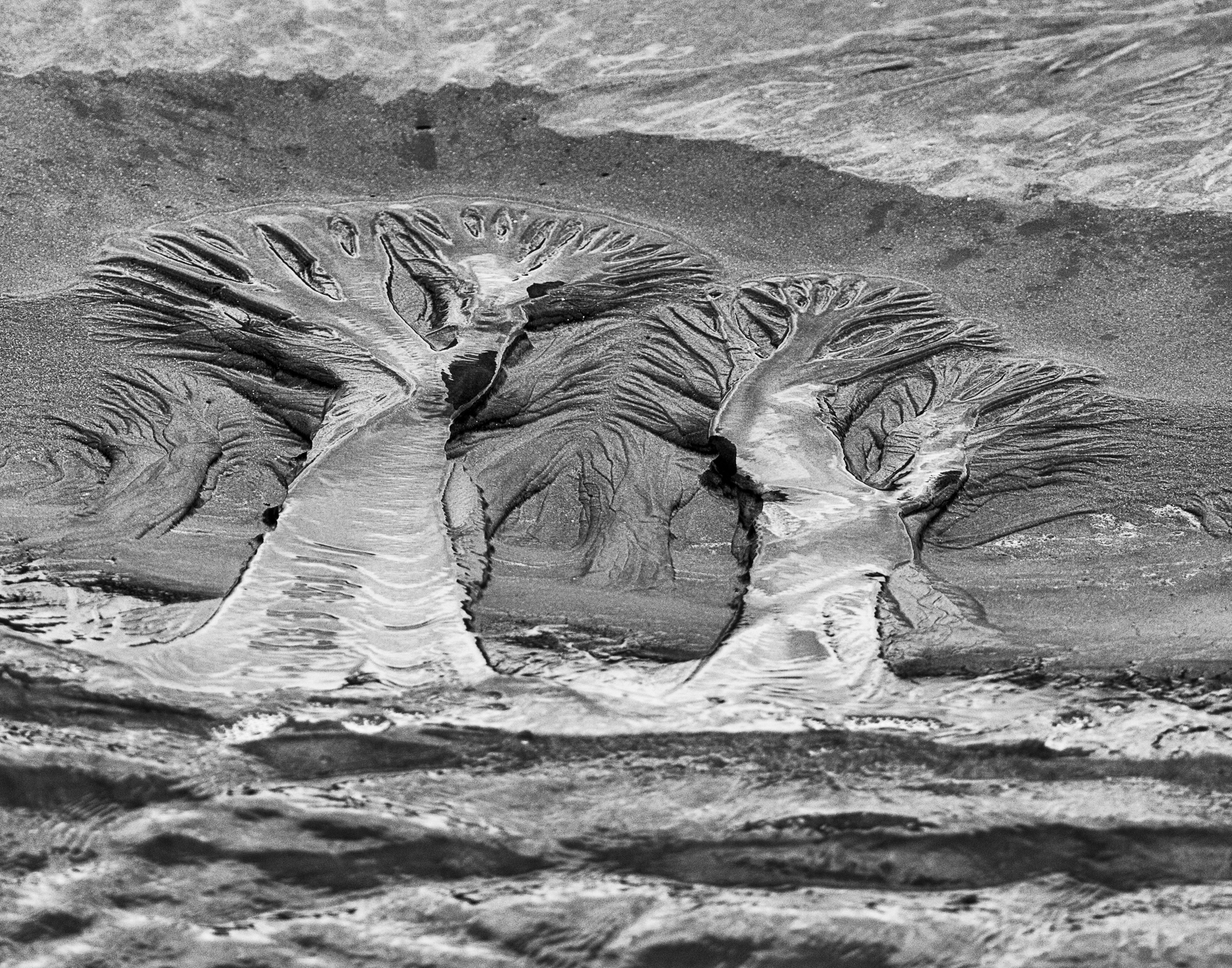 """HONORABLE MENTION Amateur category: Sand Trail by Patricia Schaefer; """"This is a capture of a very small  sand trail left as the tide receded. The image was taken at Seabrook Island on Augst 28, 2015 around noon. The viewer can decide what they see in the image."""""""