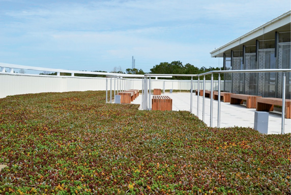 A Green Roof Outfitters system atop a Trident Tech building