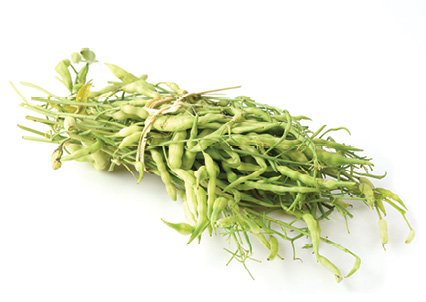 """Lean & Green: """"My favorite winter vegetable this year is our rat-tail radishes; they're longer in shape and more pleasant in flavor."""""""