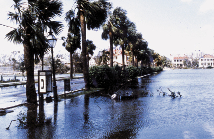 A swamped Colonial Lake looking west down Ashley Avenue