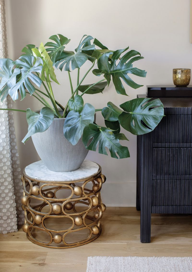 and Ro Sham Beaux table-turned-plant stand, offer a little luster.