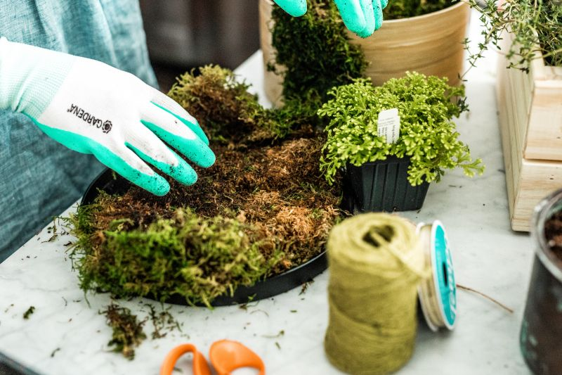 Lay a piece of sheet moss on your workstation, dirt-side up.