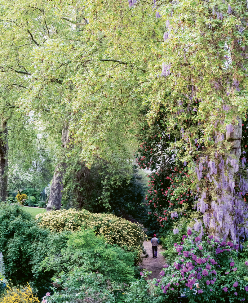 A pathway view of the gardens of Eccleston Square from the Eccleston Square Hotel