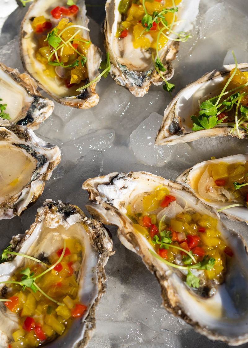 Oysters from The Obstinate Daughter