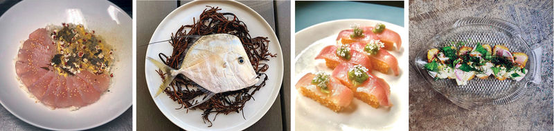 Chefs and restaurants proudly share their Abundant Seafood catches and compositions on their Instagram feeds: (left to right) king mackerel with Carolina Gold rice middlins and popped sorghum at FIG, a whole lookdown jack destined for someone's dinner at Delaney Oyster House, banded rudderfish at Chubby Fish, and albacore tuna katsu at Jackrabbit Filly